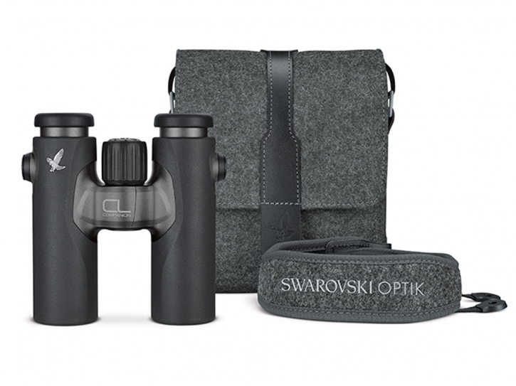 Swarovski CL Companion 8x30 anthrazit - Northern Lights