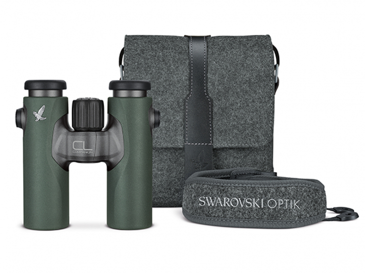 Swarovski CL Companion 8x30 grün - Northern Lights